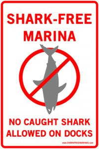 Shark-Free Marina Initiative