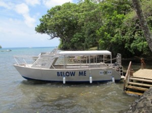 Below Me, our custom built dive vessel on Kadavu