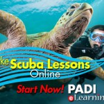 Learn to dive with our PADI Dive Courses