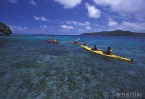 Tamarillo Sea Kayakaing