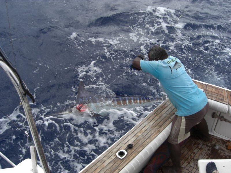 Game fishing matava for Fishing resorts near me